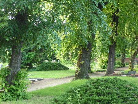 Historischer Friedhof St. Petrus Osmünde